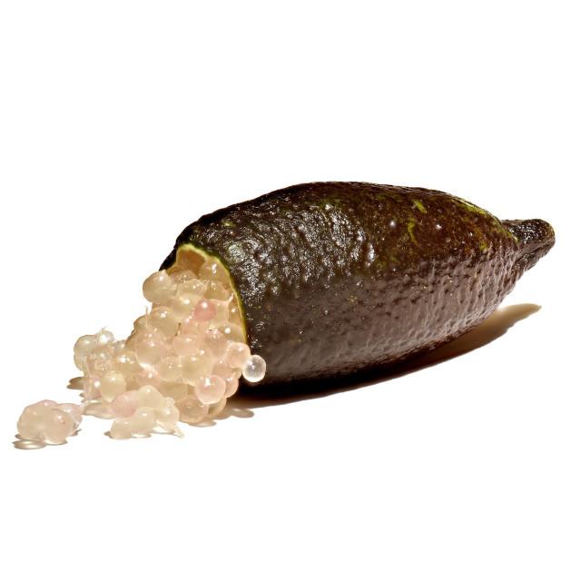Caviar Cítrico Vivero Rosben