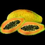 Papaya Rosben