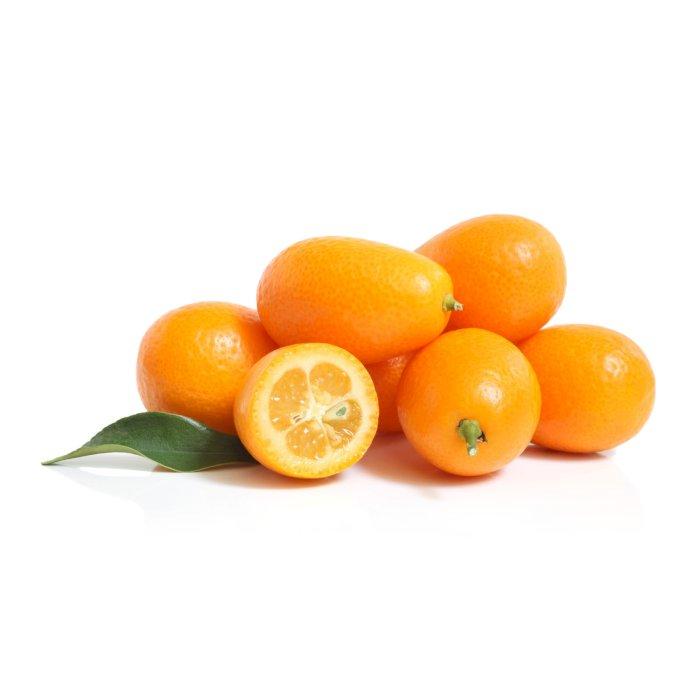 comprar kumquat en españa