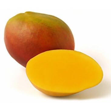 compra mango tommy atkins españa